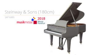 Szablon SAP 6889 NOWE (180cm) messe 2018 copy