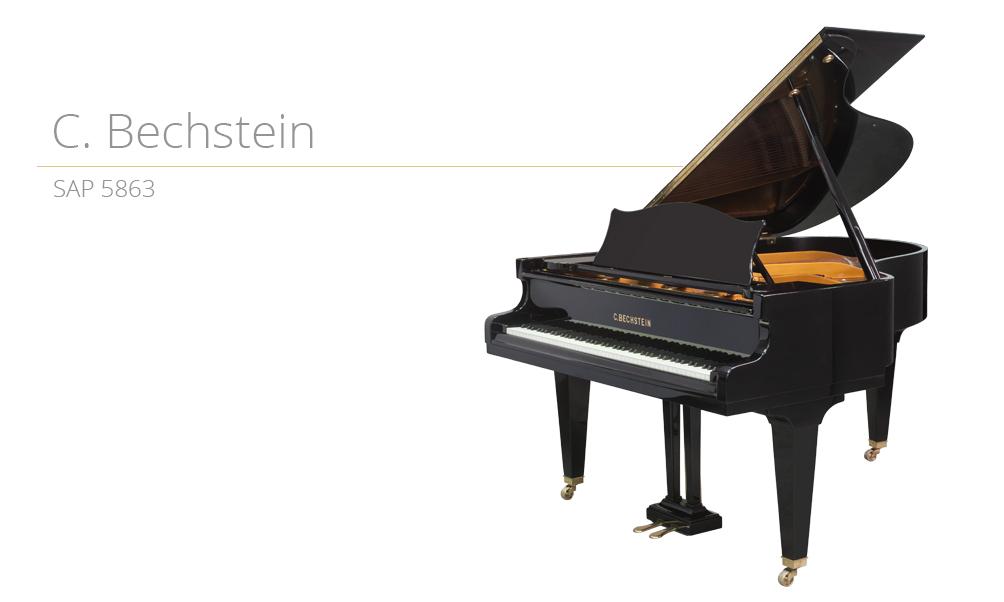 SAP 5863 piano_szablon (3) copy