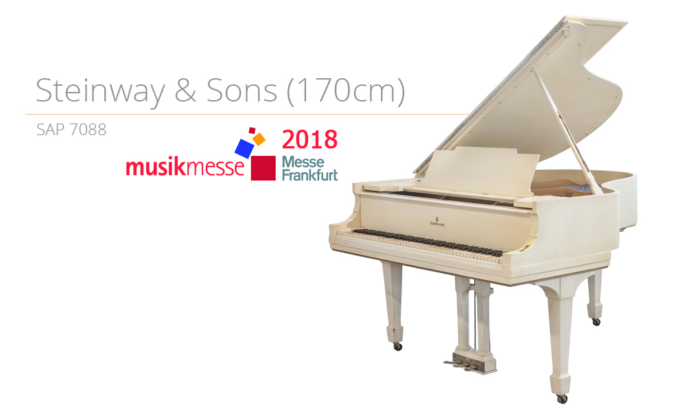 Szablon SAP 7088 (170cm) MESSE 2018