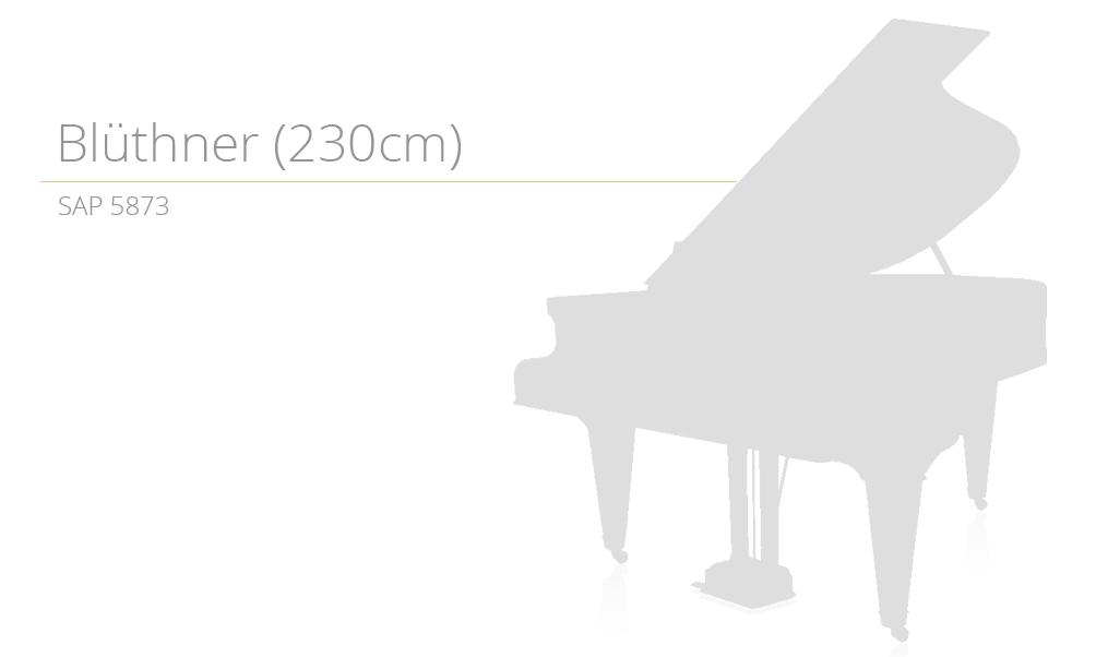 piano_szablon SAP 5873 copy