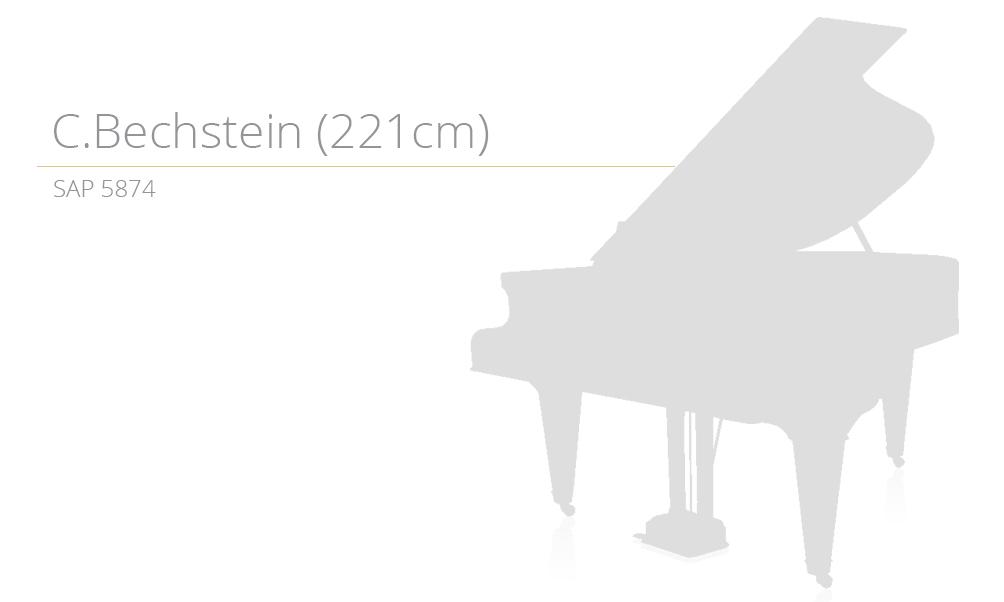 piano_szablon SAP 5874 copy