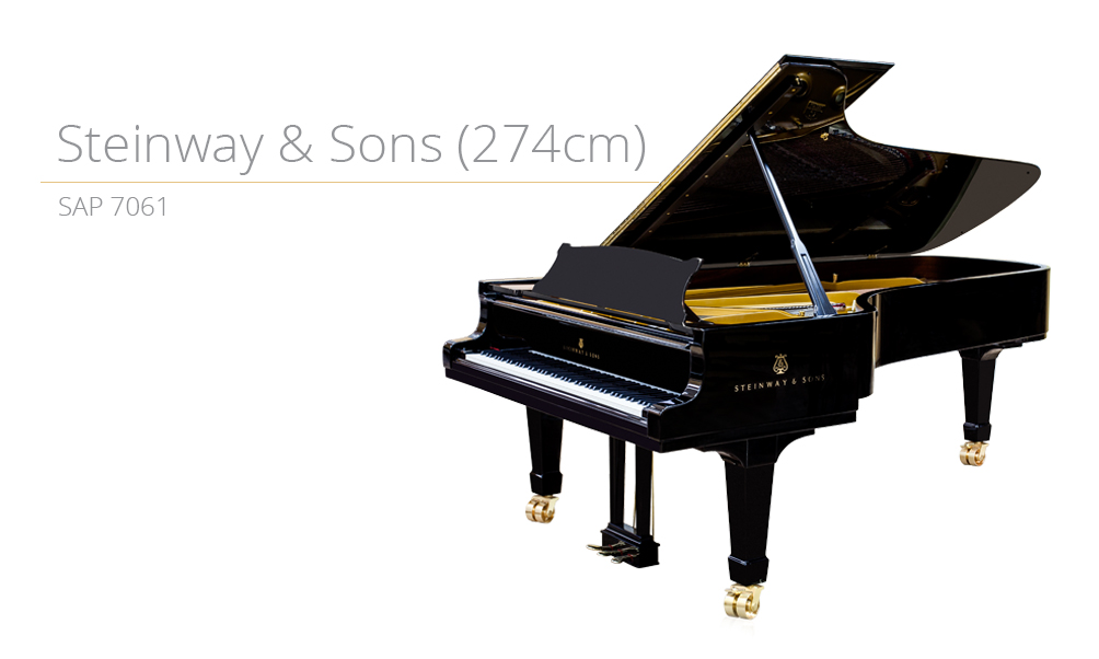 piano_szablon SAP 7061 (274cm) copy