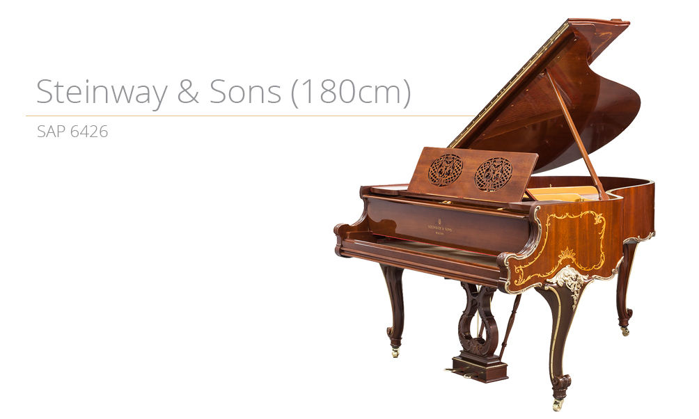 piano_szablon SAP 6426 copy