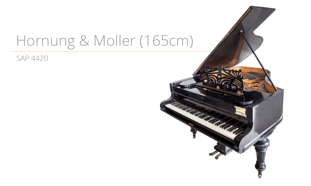 piano_szablon SAP 4420 (165cm) copy