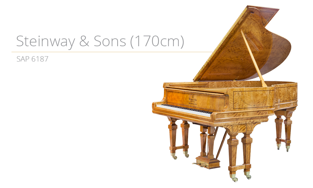 piano_szablon SAP 6187 (170cm) copy