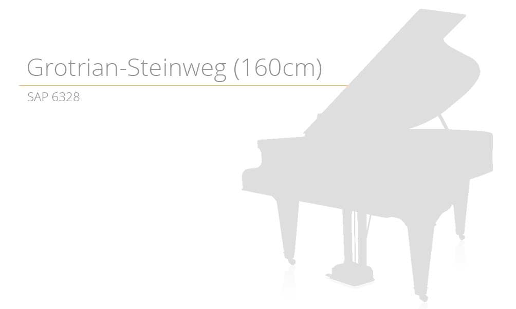 piano_szablon SAP 6328 (160cm) copy