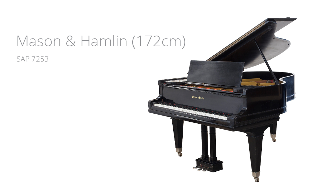 piano_szablon SAP 7253 (172cm) copy