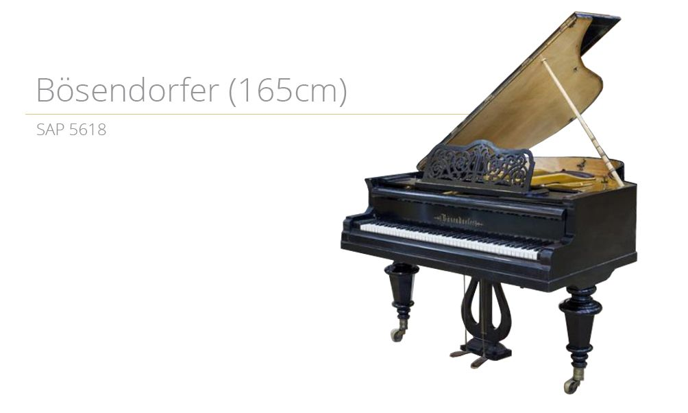 piano_szablon SAP 5618 (165cm) copy