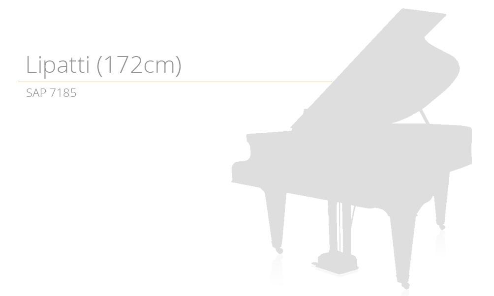 14.szablon SAP 7185