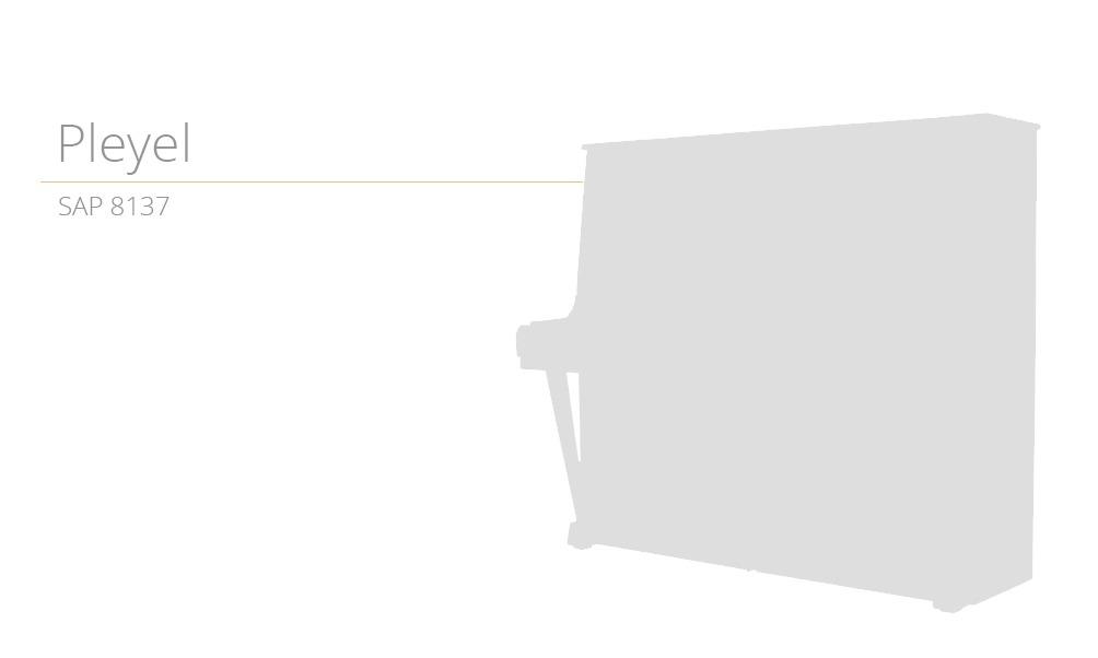 18.szablon SAP 8137