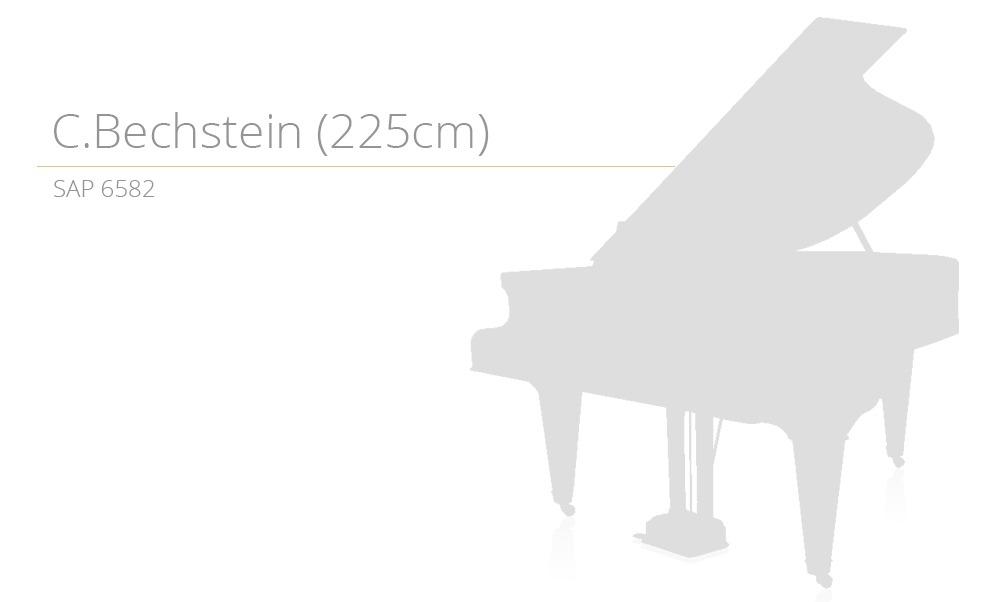 POPRAWIONY SZABLON SAP 6582 (225cm)