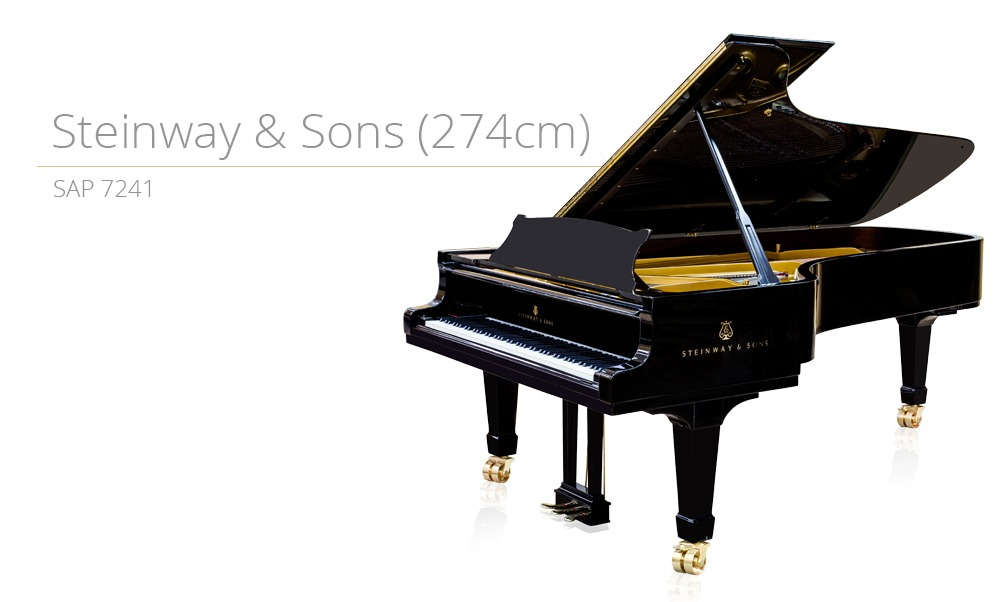 piano_szablon SAP 7241 (274cm) copy
